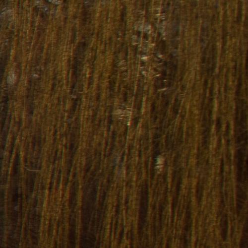 minolta-22